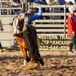 Rodeo — Stock Photo #28182093