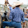 Rodeo — Stock Photo