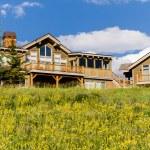 Mountain home — Stock Photo #28836629
