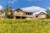 Casa de montanha — Fotografia Stock