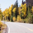 Autumn on road — Stock Photo #30919469