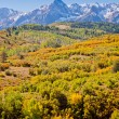 Dallas Divide in Autumn — Stock Photo #30922157