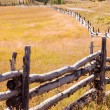 Split Rail Fence — Stock Photo #30924103