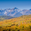Dallas Divide in Autumn — Stock Photo #30925381