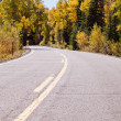 Autumn on road — Stock Photo #30926029
