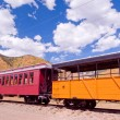 Narrow Gauge Train — Stock Photo