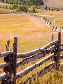 Split Rail Fence — Stock Photo