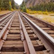 Railroad Tracks — Stock Photo #30930389