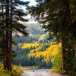 Mountain Road — Stockfoto