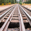Railroad Tracks — Stock Photo #30931149