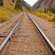 Railroad Tracks — Stock Photo #30931359