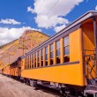 Narrow Gauge Train — Stock Photo #30931865
