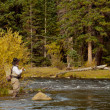 Fly Fisherman — Foto Stock