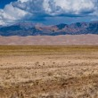 Stock Photo: Great Sand Dunes