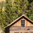 Cabin — Stock Photo #30950507
