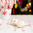 Peppermint chocolate cake pops — Stock Photo #37296857