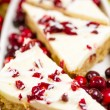 Cranberry bliss bar — Stock Photo #37297719