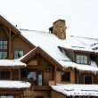 Skiing Lodge — Stock Photo #41142881