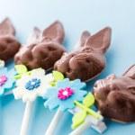 Chocolate bunnies — Stock Photo #42573123