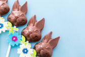 Chocolate bunnies — Stock Photo