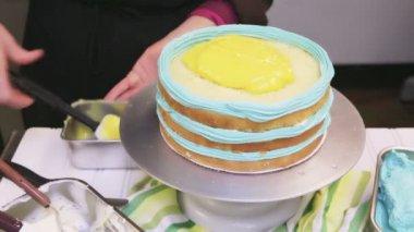 Robins egg cake — Stock Video