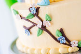 Spring cake — Stock Photo
