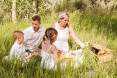 Family on summer picnic — Stock Photo