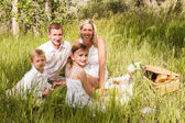 Family on summer picnic — Stock Photo