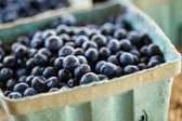 Fresh produce blueberries — Stock Photo