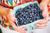 Fresh produce blueberries — Stock Photo