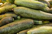 Fresh produce zucchini — Stock Photo