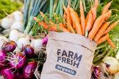 świeże produkty - warzywa — Zdjęcie stockowe