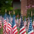 American flags — Stock Photo #6094246