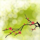 Wintersweet, zimní květ na pozadí, světlé přírodní poza — Stock vektor