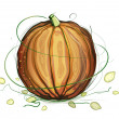 Stock Vector: Pumpkin and Seeds Illustration