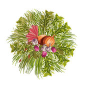 Vegetables Decorative Circle — Stock Vector
