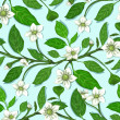 White Flowers on Twig Seamless Pattern - Stockvectorbeeld