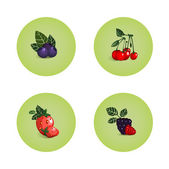 Blackberry Cherry Strawberry Bilberry Icons — Stock Vector