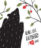 Wild Black Bear Loves Raspberry — Stock Vector