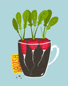 Growing Radish with Green Leafy Top in Pot — Stock Vector