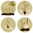 Royalty-Free Stock Vector Image: Gardening Icons Collection