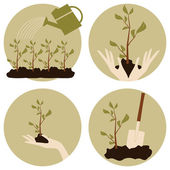 Gardening Icons Collection — Stock Vector