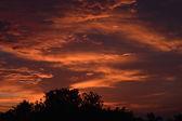 African sunrise — Stock Photo