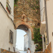 Stock Photo: Old city gate in Casares
