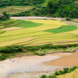 Small stream flowing through the terraced fields., Mu Cang Chai — Stok fotoğraf