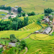 Hilltop village, Muong Hoa valley terraced fields, Sa Pa Town, Vietnam — Stock Photo