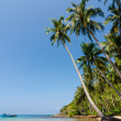 Tilted coconut trees by the beach with the boat and blue sky, Nam Du Islands, Vietnam — Stock Photo