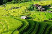 Hoang Su Phi terraced fields, Ha Giang province, Vietnam — Stock Photo
