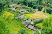 Hilltop village, Muong Hoa valley terraced fields, Sa Pa Town, Vietnam — Foto de Stock