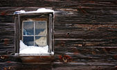 Snow-covered window — Stockfoto